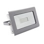 ANTRA LED100W-NW GR -